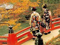 Слово гейша происходит из японского языка и состоит из двух частей: гей - что означает искусство, и ся...